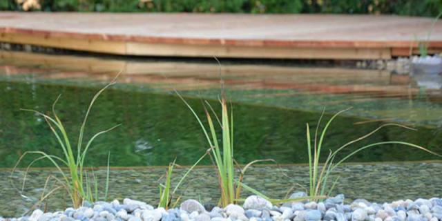 Natur Pool